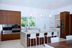 DSC_0833-transitional-kitchen